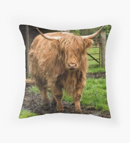 A Stroll in the Mud Throw Pillow