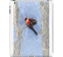 Water Color Cardinal iPad Case/Skin