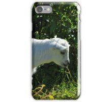 Kid Goat in Bushes iPhone Case/Skin