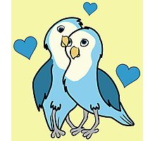 Valentine's Day Blue Love Birds with Hearts Photographic Print
