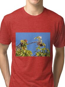 Boab Tree Fruit and Flower, Kimberley, Western Australia Tri-blend T-Shirt