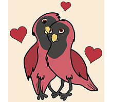 Valentine's Day Red & Black Love Birds with Hearts Photographic Print