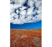 Red, White and Blue - Bay of Fires, Tasmania Photographic Print