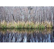 Swamp Reflection Photographic Print