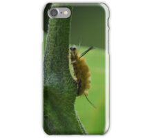 Caterpillar on Tomato Plant iPhone Case/Skin