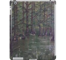 On the Way to French Settlement iPad Case/Skin