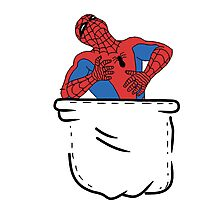 Spiderman Photographic Print