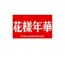 In the Mood for Love Photographic Print