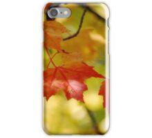 Canadian Maple Leaf iPhone Case/Skin