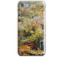 Autumn's Beauty iPhone Case/Skin