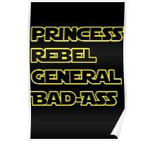 Princess Leia: A Summary Poster