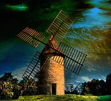 The Old Mill  by Irene  Burdell