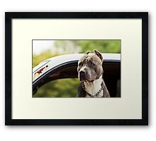 Muscles Framed Print