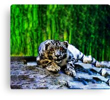 Snow Leopard With Red Eyes Drawing lying on rocks Canvas Print
