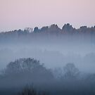 Dawn Mist portrait by Sue Robinson