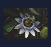 Delicate and Beautiful Passiflora Flower Baby Tee