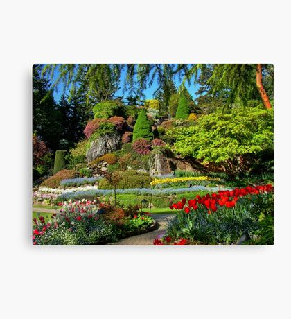 BUTCHART Gardens in Spring, Canvas Print