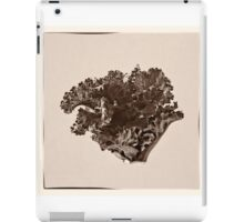Plant Form 76 iPad Case/Skin