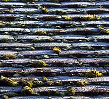 Frost on Roof by Sue Robinson