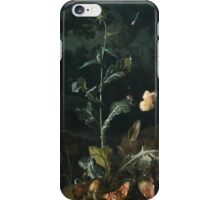 Otto Marseus van Schriek, called Snuffelaer, NOCTURNAL FOREST FLOOR STILL LIFE WITH A THISTLE, BUTTERFLIES, MUSHROOMS AND A FROG iPhone Case/Skin