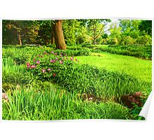 Impressions of Gardens - Lush Green and Blooming Peonies Poster