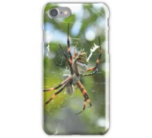 Orb Weaver Spider and Prey in a Web iPhone Case/Skin