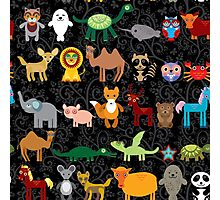 Animals on black background Photographic Print
