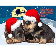 Puppy Christmas: I saw Mummy Kissing Santa Claus Vector Photographic Print