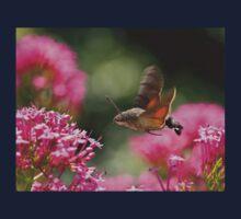 Hummingbird Hawk-moth One Piece - Long Sleeve