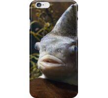 Fish in an aquarium iPhone Case/Skin