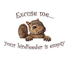 Excuse me...your birdfeeder is empty by Susan S. Kline
