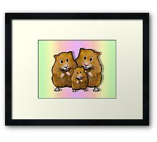 Hamster Family of Three, Colorful Background: Art Framed Print