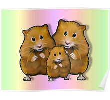 Hamster Family of Three, Colorful Background: Art Poster