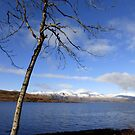 Loch Linnhe, Scotland by trish725