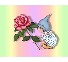 Gnome Child with Pink Rose, Colorful Background: Art Photographic Print