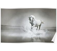Horse - Oil Paint Art Poster