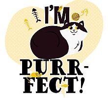 I'm Purr-Fect Cat Photographic Print