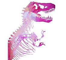 Fabulous Rex Photographic Print