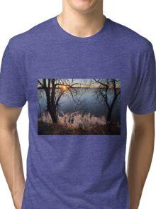 Ice World  Tri-blend T-Shirt