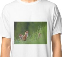 Red foxes  Classic T-Shirt