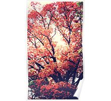Trees - autumn reds (2015) Poster