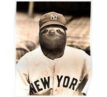 Baseball Sloth Poster