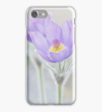 Pasque Flower iPhone Case/Skin