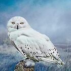 Snowy Owl in mist by Tarrby