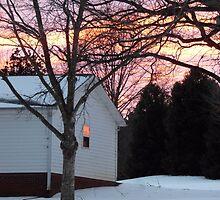 Winter in North Carolina by Elissa Capelle Vaughn