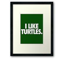 I LIKE TURTLES. - Alternate Framed Print