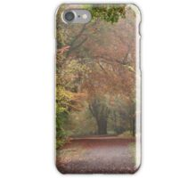 Dreamy Paths of Autumn Gold iPhone Case/Skin