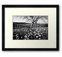 Under the Apple Tree Framed Print