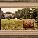 """Bales along the Tree Line"" ...with a matted and framed presentation, for prints and products  by © Bob Hall"