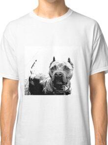 Pitbull Dog Classic T-Shirt